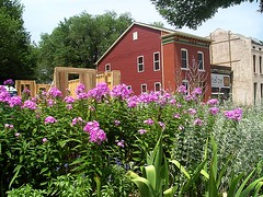 a neighborhood garden graces redevelopment work (image courtesy Old North St. Louis)