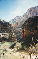 Zion National Park (St. George, Utah) (aimeedars) Tags: mountains nature beauty landscape march nationalpark hiking 1996 hike environment zion soutwest zionnationalpark canyons americansouthwest dogood