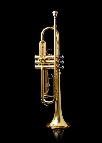 Trumpet by Steve Wampler.