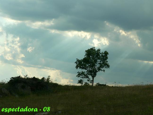 fisuras en el cielo