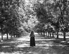 Untited (Megan Saul) Tags: blackandwhite bw color film negative 4x5 ilford largeformat viewcamera ilfordfp4 megansaul wwwmegansaulcom
