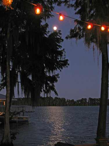 Lake and Moon with Party Lights