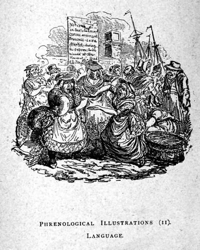 07- Ilustracion Frenologica- Lenguaje