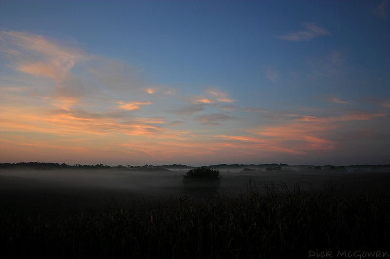 Foggy Sunrise II