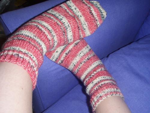 Ladybird Socks 3