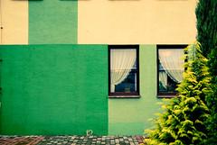 Green wall (bellyanz1) Tags: uk paris green london window amsterdam wall newcastle airplane hotel airport europe frankfurt poland warsaw osaka katowice tychy kielce polad lskie wartogowiec