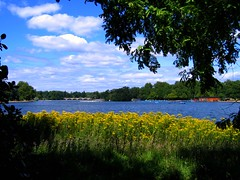 The Serpentine Lake in Hyde Park, London (UGArdener) Tags: england london english unitedkingdom britain july hydepark summertime kensington kensingtongardens princessdiana serpentinelake fluffyclouds londonparks urbanparks englishtravel