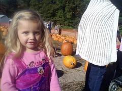 Alayna Pumpkin