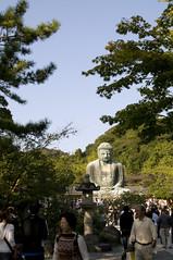 鎌倉大仏, 高徳院, 鎌倉