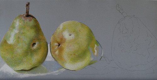 In progress photo of colored pencil drawing of three pears.
