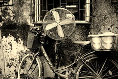 Who said a bicycle can't be cool? (... Arjun) Tags: city 15fav india cold texture topf25 monochrome bike bicycle sepia 1025fav 510fav vintage cool nikon asia thought who mountainbike monotone 100v10f calm fresh retro cant textures 2550fav cycle trendy bombay metropolis maharashtra chilly serene said hip d200 tandem held mumbai 2008 supposed chill hypocrisy breezy sahar humbug nonchalant 18mm composed fashionable alleged understood believed unflappable lipservice racingbike insincerity freshen whispered assumed unruffled 18200mmf3556g bluelist withit imperturbable makecold falsepiety lowerthetemperature
