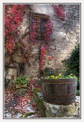 Colori d'autunno......... (Tiziano Taddei) Tags: italy photoshop landscape photography landscapes nikon photos natura tuscany fiori landschaft paesaggi paesaggio fotografo particolari d300 fotografare fotoclub supershot passionphotography platinumphoto colorphotoaward diamondclassphotographer megashot shieldofecellence eliteimages fotoclubilbacchino goldstaraward mailciler mr1p