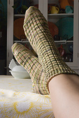 CSM Socks - Fannie's Fingering Weight
