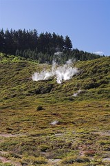 IMG_2648-01 (peterjwaldeck) Tags: newzealand taupo hawkesbay cratersofthemoon