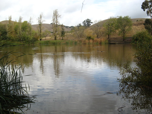 Big pond in the main area of Garin Park