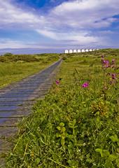 path (macmarkmcd) Tags: d50 nikon devon beachhut warren dawlish
