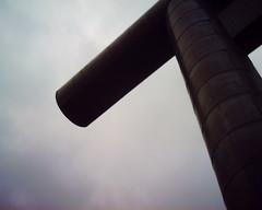 【写真】Torii (VQ1005)