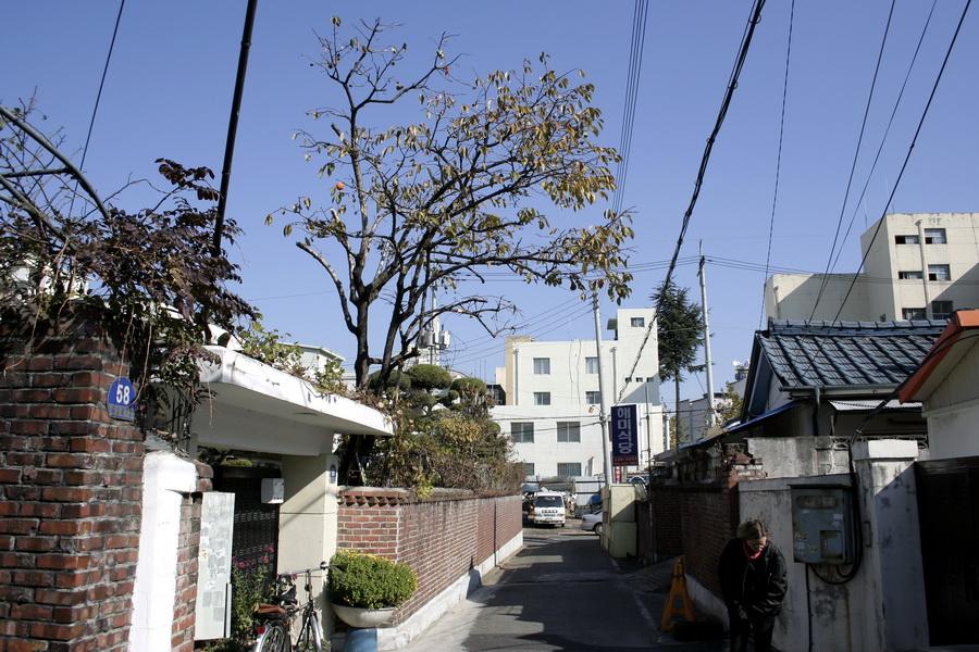 Street(3)
