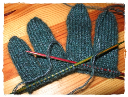 fingerhandschuh2008.1b
