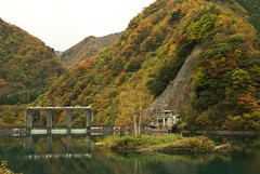 autumn leaves /  (Yoichi_) Tags: reflection water japan geotagged nikon autumnleaves     d80 yamanashiprefecture geo:lat=35570459 geo:lon=13830004 nishiyamadam