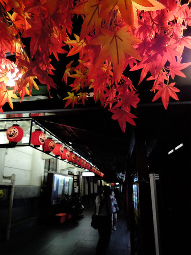 kabukiza*maple[fake]