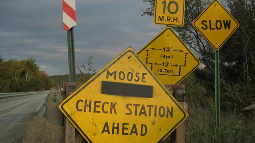 Moose Check Station Ahead