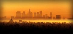 this is L.A. (inthery) Tags: california city sunset fog sunrise buildings losangeles downtown cityscape dusk palmtrees hollywood dodgers sunsetblvd cityofangels