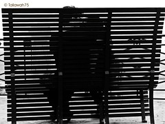 kiss me (tallawah75) Tags: boy bw love girl bench kiss sitting stripes lovers bigmomma challengeyouwinner frenteafrente ltytr2 ltytr1 ltytr3 ltytr4 ltytr5 a3b thechallengefactory agcg