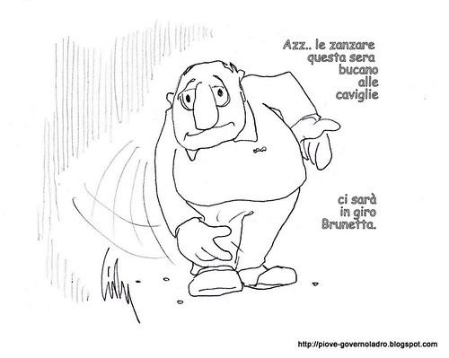 Zanzare by Livio Bonino