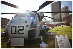 Marine Week 6