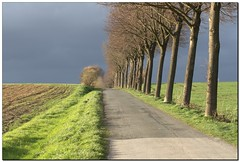 It Will Rain Soon (- Burning Rubber -) Tags: trees rain way felder fields miscellaneous countrylane bume regen feldweg darksky spaziergang burningrubber naturesfinest supershot dunklerhimmel mywinners canoneos400d superbmasterpiece diamondclassphotographer excellentphotographerawards theperfectphotographer naturemasterclass natureselegantshots 100commentgroup