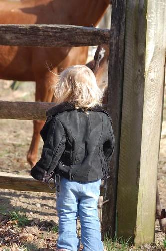Leda and the Horses
