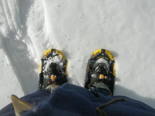 snowshoe feet