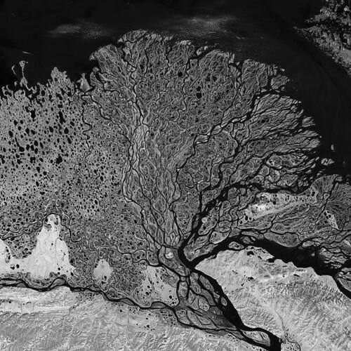 Lena River Delta by aeroculus