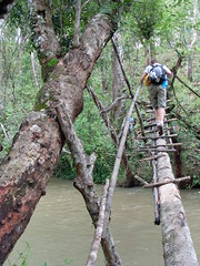 Safe River Crossing (Krystal & Erik) Tags: trek thailand hike mai jungle chiang