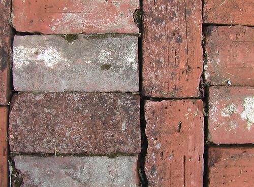 Brick(s)