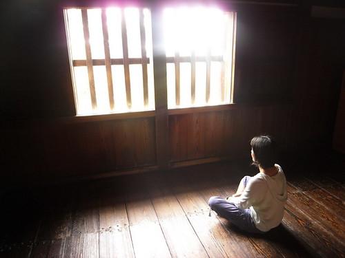 peace, Zen, 2010, resolutions, beginnings, freelance, balance, work