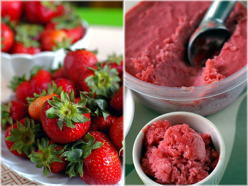 strawberry rhubarb sorbet