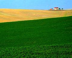 ORCIANO (LivornoQueen) Tags: italians naturallyartificial