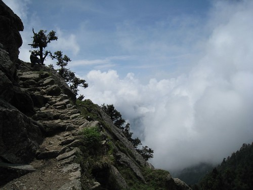 Trail from Triund to snowline
