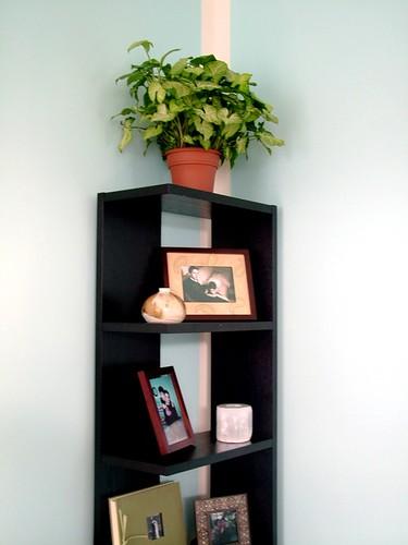 The Narcissist Shelf