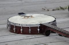 Banjo (kalani kordus) Tags: alaska kodiak
