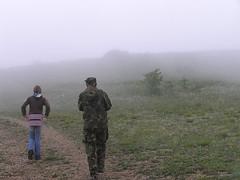 20 утро туманное