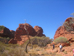 Uluru tour