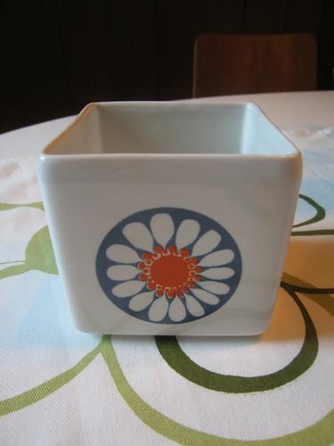 Daisy butter cup