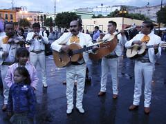 Mariachis on Garibaldi square
