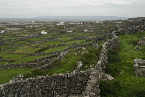 R. Todd Felton, Ireland