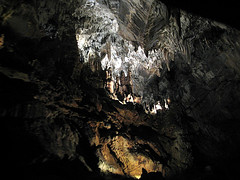 penn's cave.6 (kimberly_abruzzo) Tags: roadtrip cave pennscave watercave livingcave cavetourpennsylvania