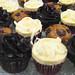 Karen Young Mini Cupcakes