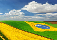Brasil (joseboa) Tags: brazil verde azul bandeira brasil do e bandera pavilion flagge branca pavillon amarela bandiera vlag brazilflag lippu flmula vlajky bandery